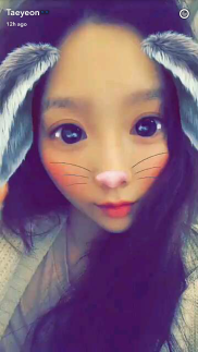 Taenggu Bunny - Inspiration Photo
